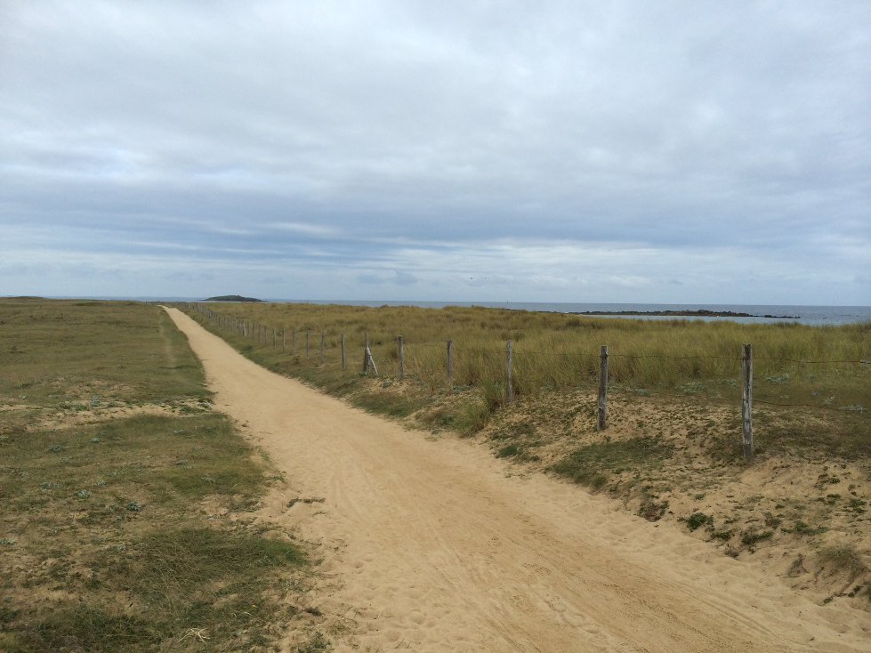Chemin-dunes_etel